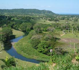 riviere les jardins de rio